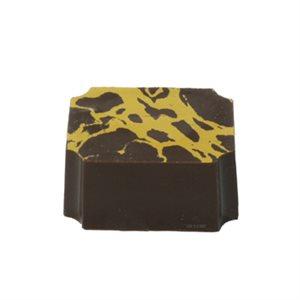 Cut Corner Magnetic Chocolate Mold